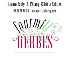 Aurore Dauly Le Tablier